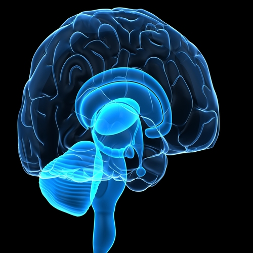 Brain Injury Lawyers in Missouri